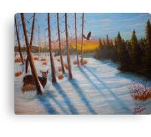 Winter Haven Canvas Print