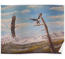 Circling Eagle. Poster