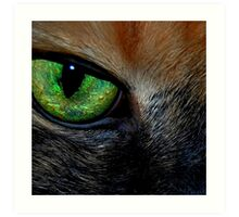 Window to Her Soul Art Print