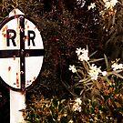 White Flowers Crossing - Perris, CA by Larry Costales