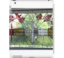 DC Waterfront iPad Case/Skin