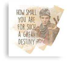 Merlin - How Small you are for such a Great Destiny Canvas Print