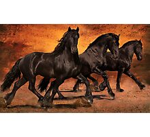 Thundering Hooves Photographic Print
