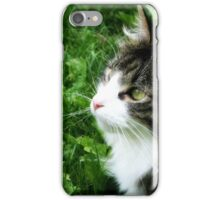 Harry in the grass iPhone Case/Skin