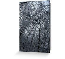 Tx Snow Greeting Card