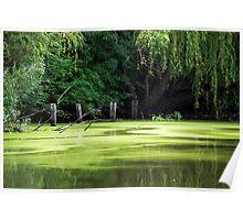 Smith Park - Pughs Lagoon... Richmond NSW Poster
