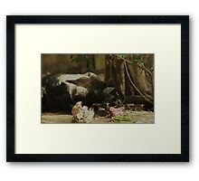 Survival! Framed Print