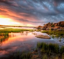 The Calm and the Storm 1 by Bob Larson