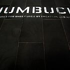 """Jumbuck"" by AlMiller"