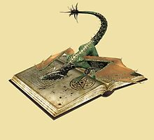 mystical book of dragons by LoneAngel