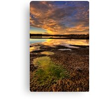 Puddles- Cropped 1 Canvas Print