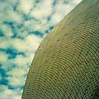Opera House Tiles and Sky by Juilee  Pryor
