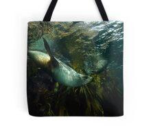 Fur Seals Tote Bag