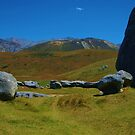 Stones of New Zealand by Susan6110