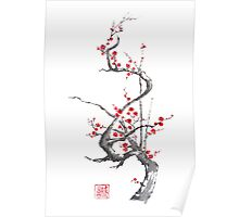 Chinese plum tree blossom sumi-e painting Poster