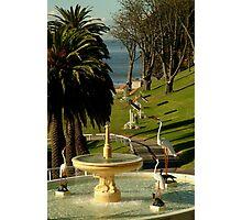 Fountain,Eastern Beach Photographic Print