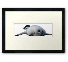 Emperor penguin chick lying down, rear view Framed Print