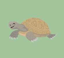 Happy Tortoise by PepomintNarwhal