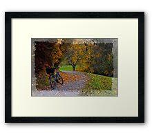 St.Gallen Switzerland Framed Print