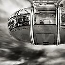 Fly With Me by Frank Waechter