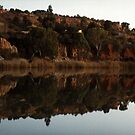 Murray River near Renmark, South Australia by BronReid