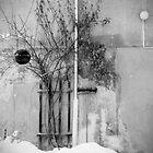 the broom by Dorit Fuhg