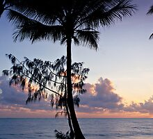Palm Cove Sunrise - Cairns, Nth. Queensland by Andrew McNeil
