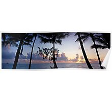 Palm Cove Sunrise - Cairns, Nth. Queensland Poster