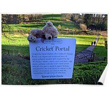 Cricket Portal............ Poster
