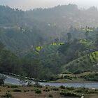 Runner in Nepal hills by rolpa