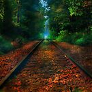 .....railways by andy551