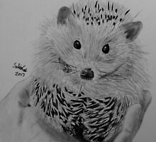 Hedgehog by Salien