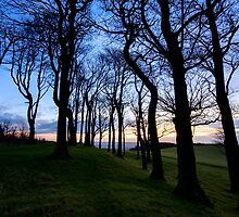 Sunrise at Chanctonbury Rings, an Iron Age hillfort by postmansmith