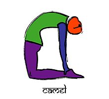 Painting of camel yoga pose with Sanskrit text. Photographic Print