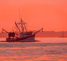 Stonington's Fishing Fleet by JoeGeraci