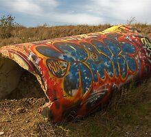 Graffiti by Sue Leonard