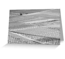 Vineyards in the snow Greeting Card
