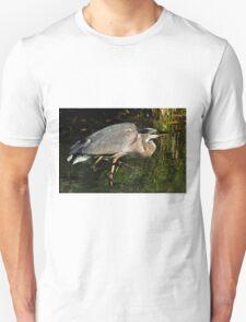 The stalker T-Shirt