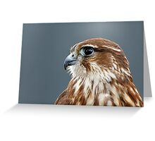 Merlin portrait Greeting Card