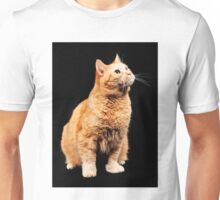 Red cat on black background Unisex T-Shirt