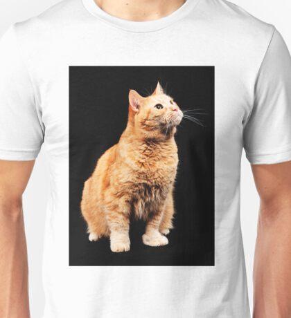 Red cat on black background Unisex T-Shirt