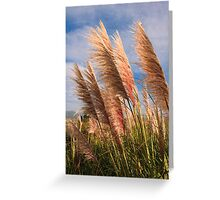 Long tall fluffy grass blowing in the wind Greeting Card