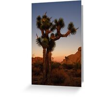 Joshua Trees in silhouette Greeting Card