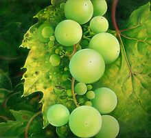 """The Grapes"" by Anna Miarczynska"
