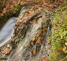 Waterfall in the fall! by Sue Leonard