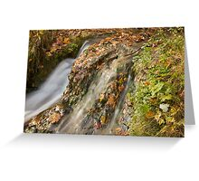 Waterfall in the fall! Greeting Card