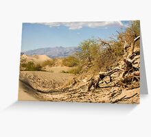 Death Valley sand dunes Greeting Card