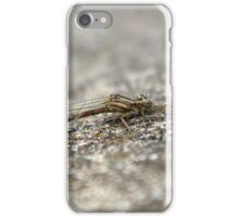 Female Small Red Damselfly iPhone Case/Skin