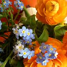 Forget-Me-Nots and Ranunculus by Barbara Wyeth