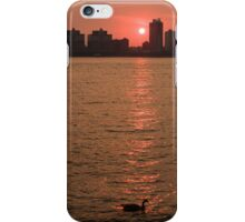 Duck Silhouetted by Sunset iPhone Case/Skin